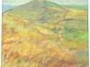 cheshire-hills-high-summer