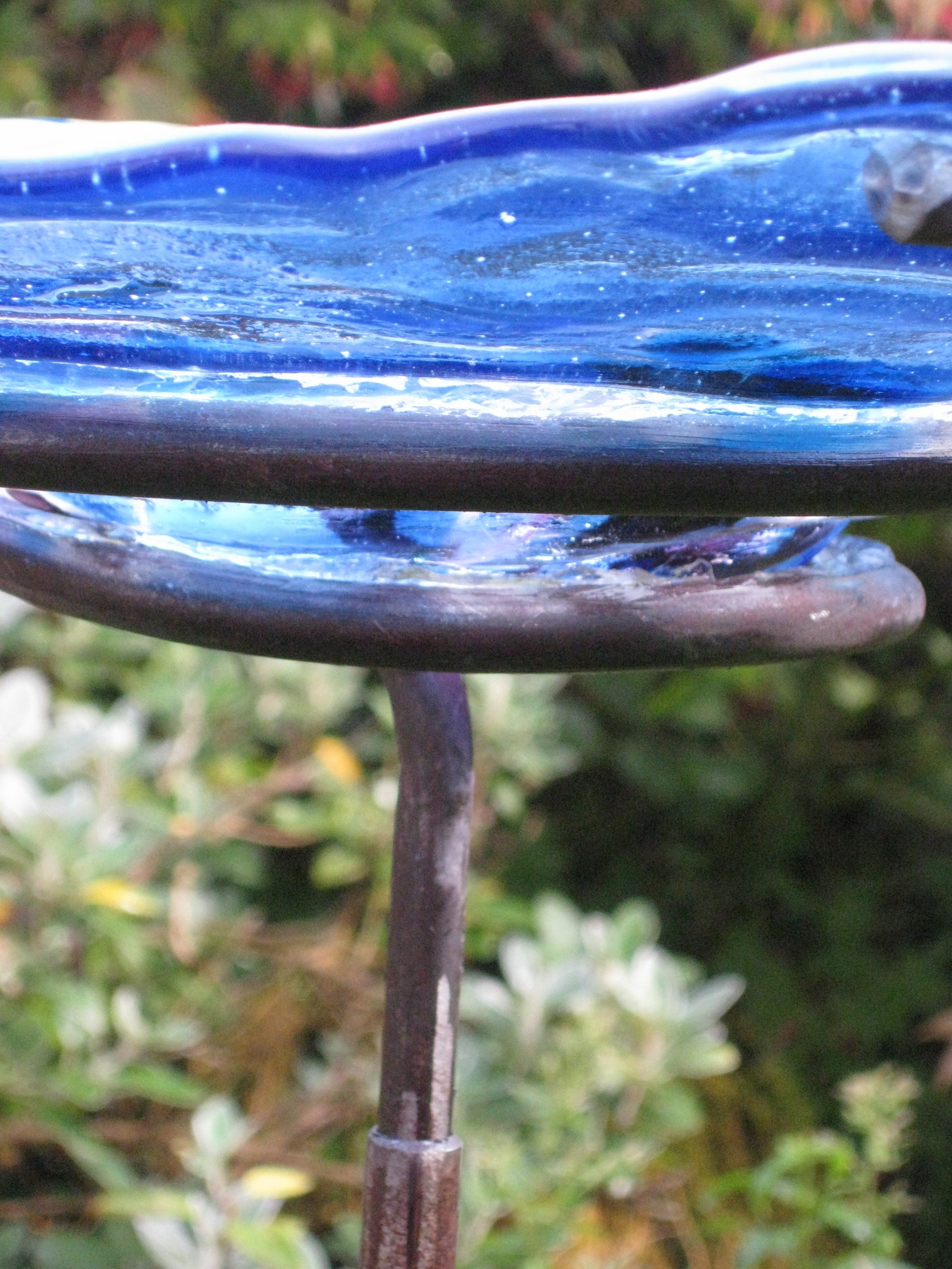 blue-bird-bath-1-7