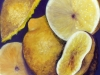 sheila-hattie-citrus-oil-300